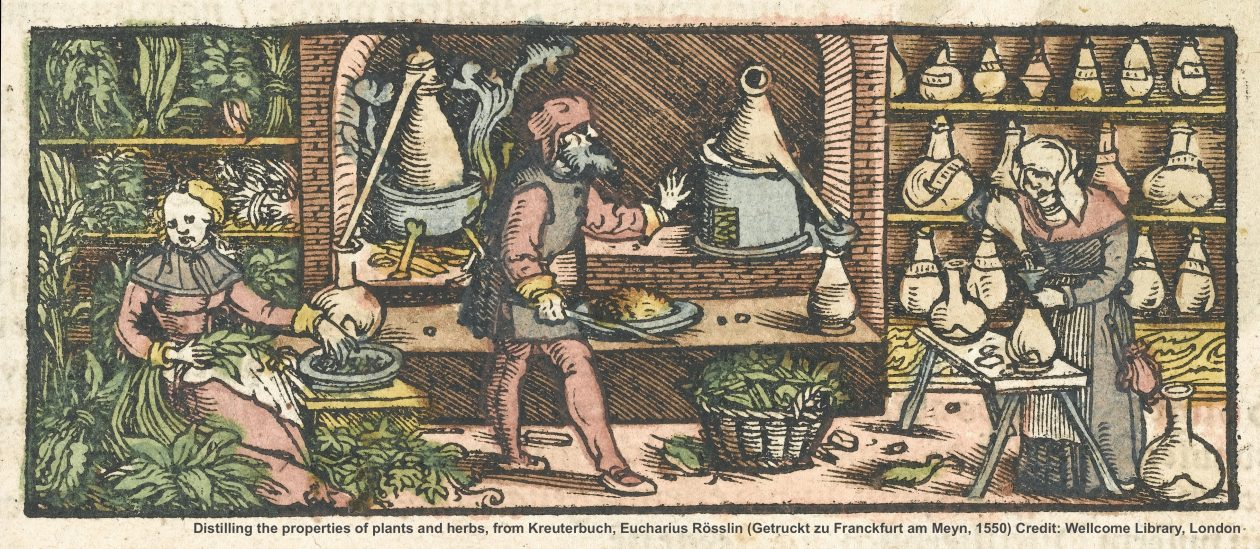 Herbal History Research Network